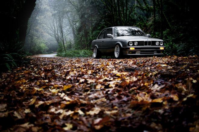 Машина среди листьев